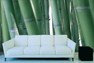 adsz-bamboo-002-425x286